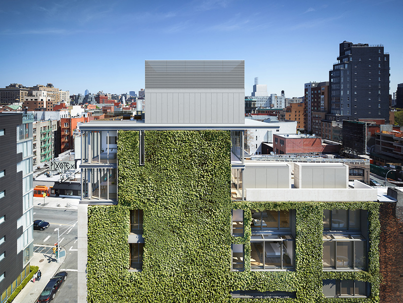 green-walls-new-york-vertical-gardens-roundup-designboom-02